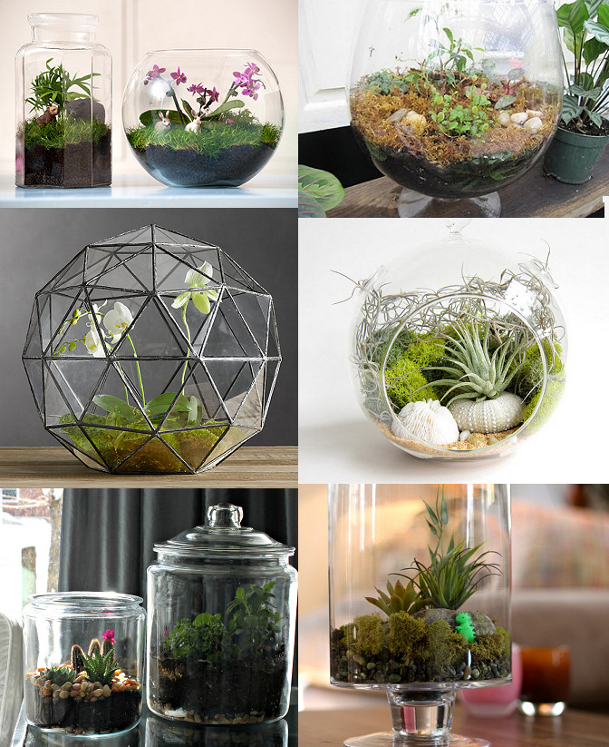 diy terrariums diy and tutorial links rags to couture. Black Bedroom Furniture Sets. Home Design Ideas
