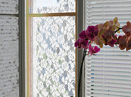 Lace Curtain Flyscreen