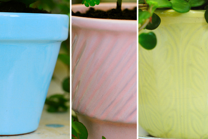 pastel colored plant pots